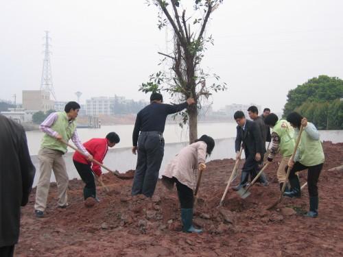 万江:青年志愿者为社区植树添绿