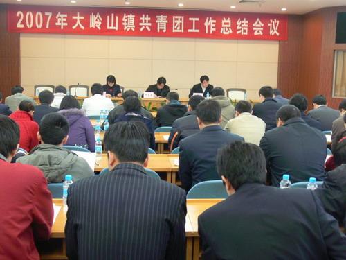 大岭山/1月28日,镇团委在镇政府2号会议厅召开了大岭山镇2007年...
