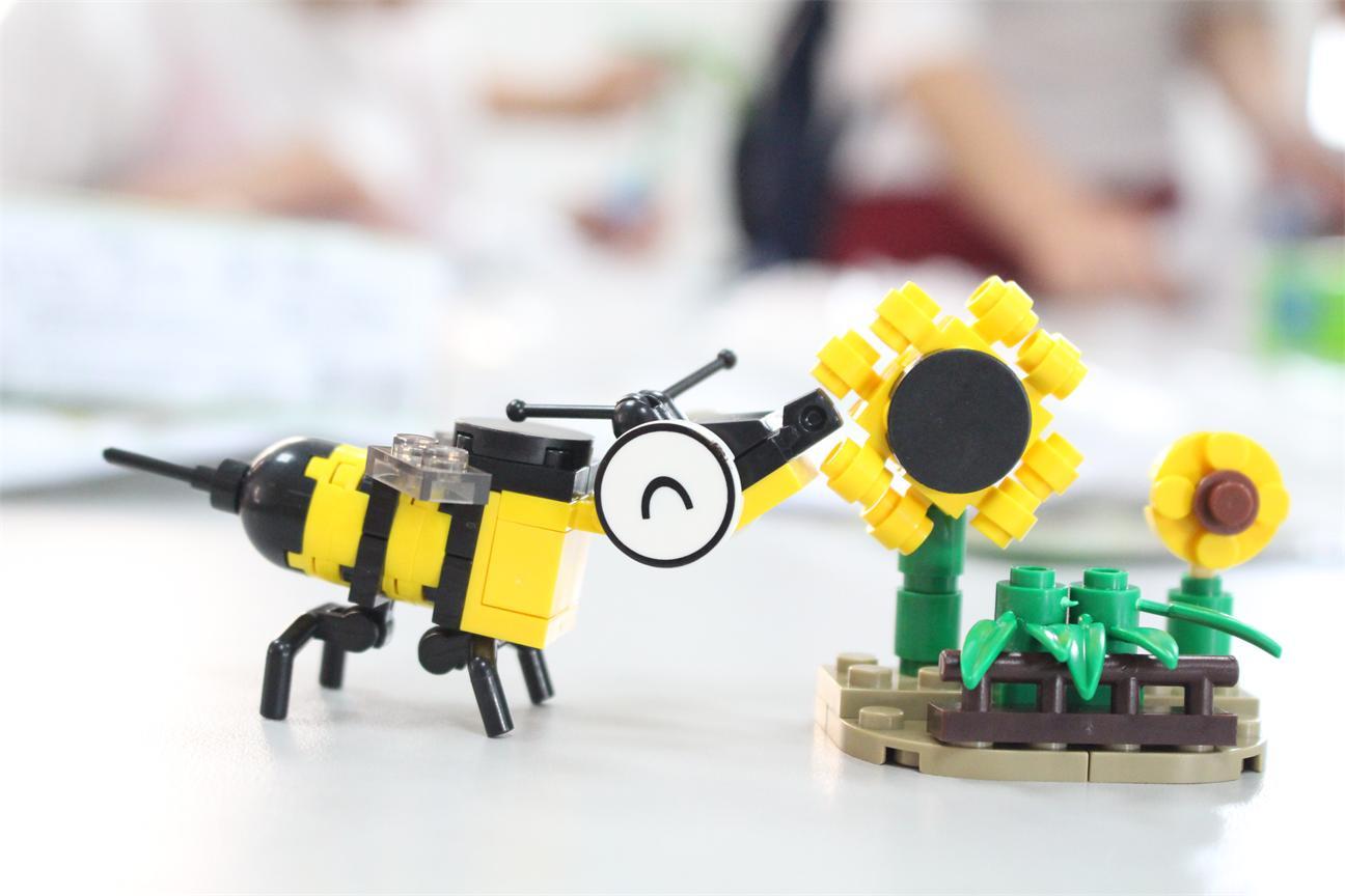 根据图纸分工合作拼制出属于自己的昆虫模型.